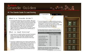 Eloqua Grande Guides